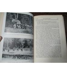 Official Australian History Japanese Thrust Pacific War Invasion