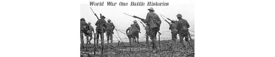 WW1 AUSTRALIAN BATTLE BATTALION HISTORY WAR BOOKS ON WAR AND  MILITARY BOOKS